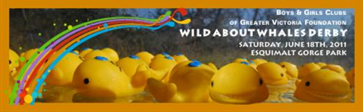Wild About Whales Derby for Boys and Girls Clubs