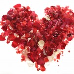 You won't find Rose petals at Accent Inns BC Hotel for Valentines day