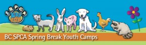 2015-spring-break-camps